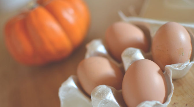 Organic Raised Chicken Eggs