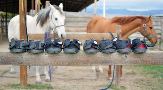 Cavallo Horse Boots The best horse hoof boot \u2013 When It Clicks