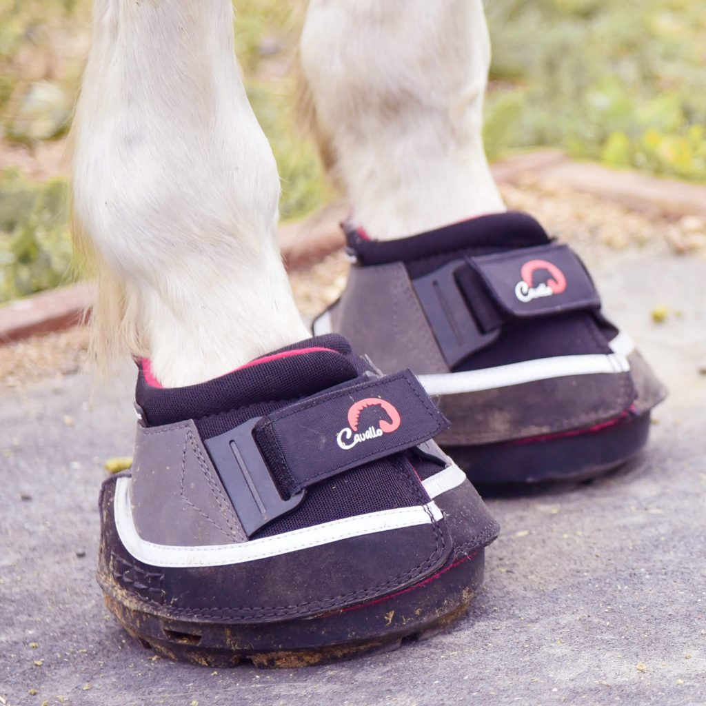 transport air cavallo hoof boot for trailering your horse safely