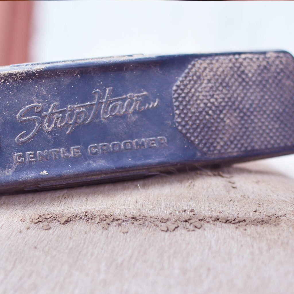 striphair removes dirt and dust